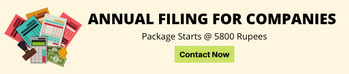 Annual Filing for Companies